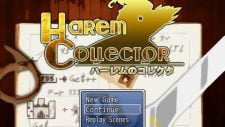 Harem Collector 18+ Adult game cover
