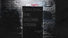 Cracking: The Second Strain 18+ Adult game cover